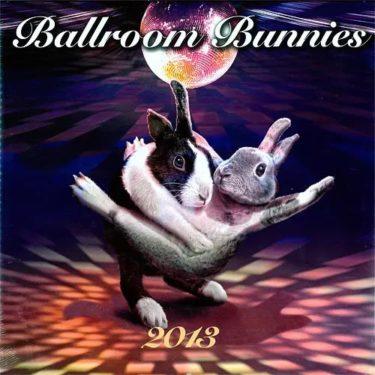 Ballroom Bunnies。。。