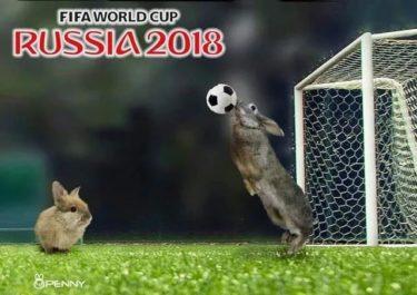 日本vsポーランド。。。
